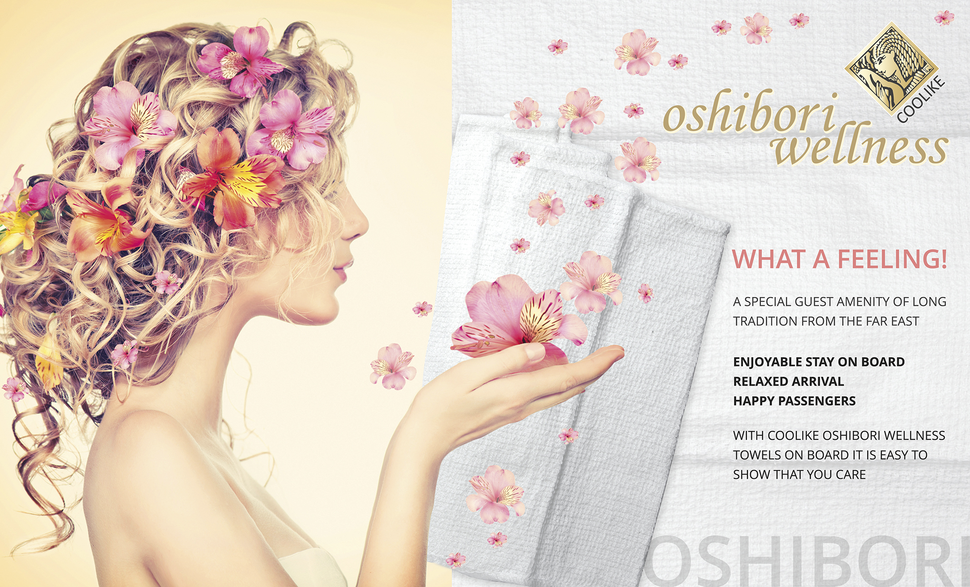 Oshibori wellness towels made from natural cotton, pre-moistened well-being towels, refreshing towels, wet wipes, hot towels, terry towels single packed, terry towel rolls, Oshibori towels, airline towels, airline hot towels, Airline oshibori, airline oshibori wellness towels, airline wet towels, airline terry towels, airline hot towels