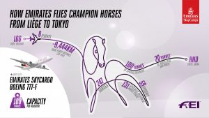 How many flights does it take to transport 247 horses from Liege to the Tokyo Olympics?